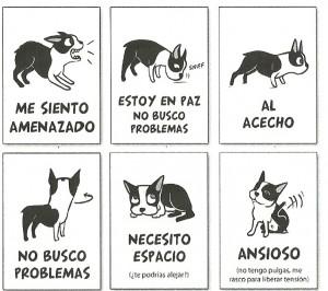 El comportamiento canino